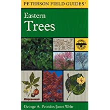 Amazon trees plants books seed bearing plants general aas a field guide to eastern trees eastern united states and canada including the midwest fandeluxe Gallery