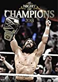 WWE: Night of Champions (2013)