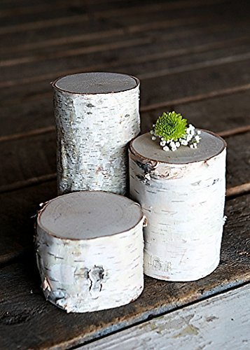 - White Birch Pillars- Set of 3: 3, 5, and 7 inch Tall x 3.5-5 inch Diameter