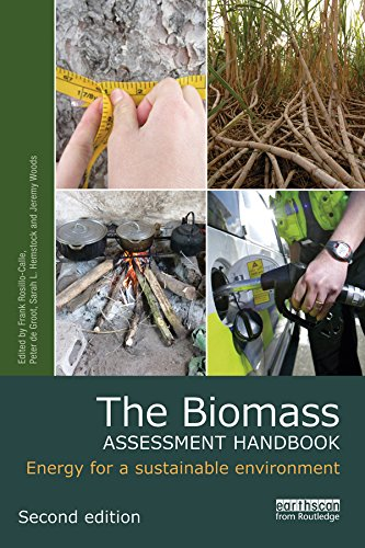 The Biomass Assessment Handbook: Energy for a sustainable environment (Routledge Studies in Bioenergy)