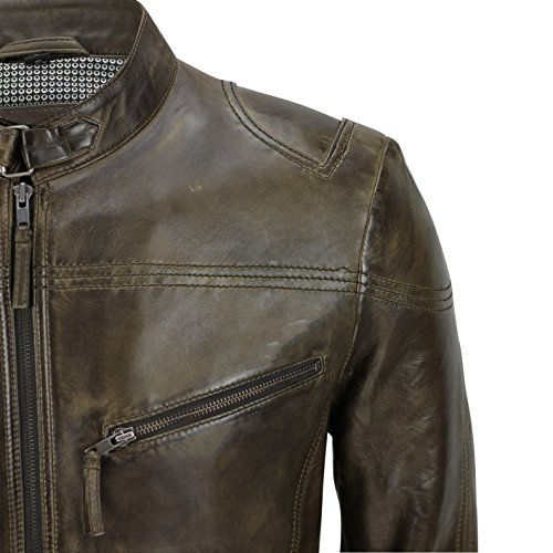 Blouson Homme Nevada Xposed Xposed Blouson Nevada Brown Brown Homme Xposed 55vn7xw