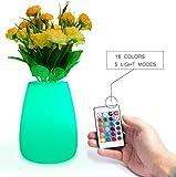 Multi-Color Waterproof LED Hydroponic Plant Flower Vase Pot