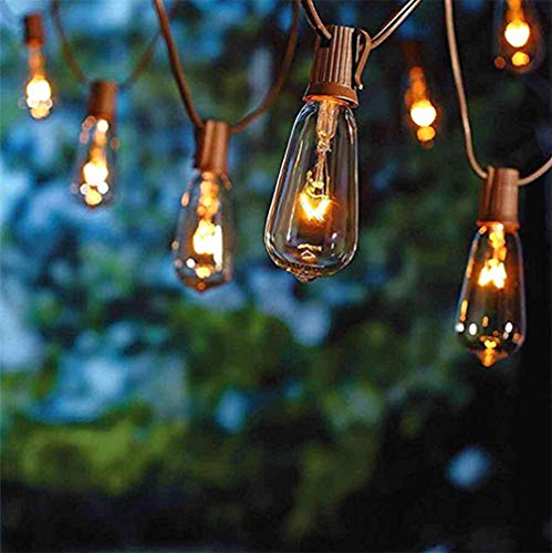 20Ft Edison String Lights with 21 Clear Edison Bulbs, UL Listed 7W E17 Base Vintage Edison Light String for Patio, Porches, Bistro, Backyard - Brown ()