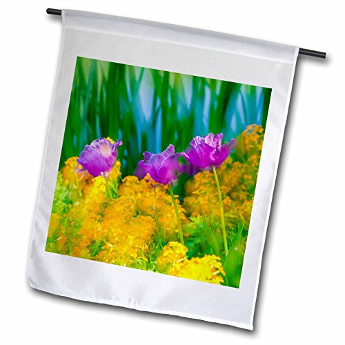 3dRose Danita Delimont - Flowers - Blurred flowers in home gardens, Giverny, France - 18 x 27 inch Garden Flag (Giverny Photo)