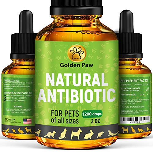 Natural Antibiotic for Dogs - Immune System Booster for Dogs - Kennel Cough Remedy for Pets - UTI Treatment - Allergy Immune Supplement for Pets - Antibiotics Alternative for Cats (Best Antibiotic For Dogs)
