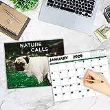 2020 Wall Calendar - Pooping Dogs 2020 Calendar