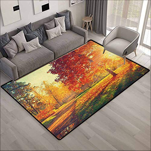 Large Area Rug,Fall Vibrant Misty Day in Forest Sun Rays Trees Foliage Fallen Leaves Calm View,Rustic Home Decor,5'6