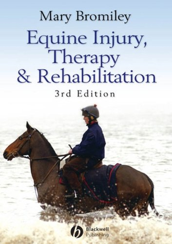 Equine Injury Therapy And Rehabilitation