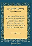 Amazon / Forgotten Books: Reliable Northern Grown Strawberry and Other Small Fruit Plants, Ornamental Shrubs and Gladiolus Bulbs Catalog, 1920 Classic Reprint (St Joseph Nursery)
