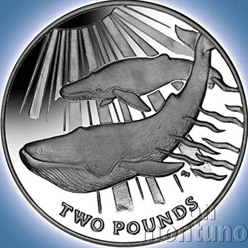 BLUE WHALE - Sterling Silver Proof Coin in Box with Certificate of Authenticity - 2013 South Georgia and Sandwich Islands £2 - Low Mintage of Only 10000 Pieces