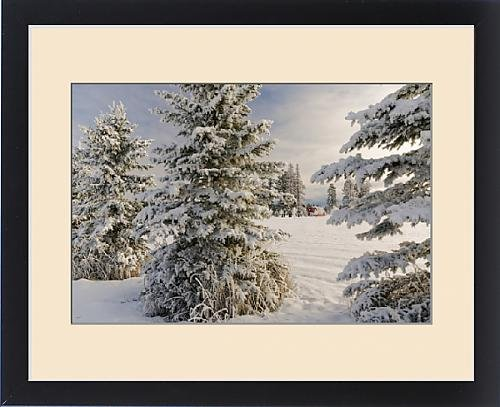 Framed Print of Classic red barn and snow scene, Kalispell, Montana by Fine Art Storehouse