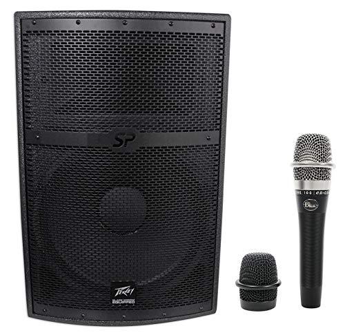 Black Speaker Widow (Peavey SP 2 SP2 2000 Watt 15