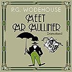 Meet Mr Mulliner (Dramatised) | P. G. Wodehouse,Roger Davenport