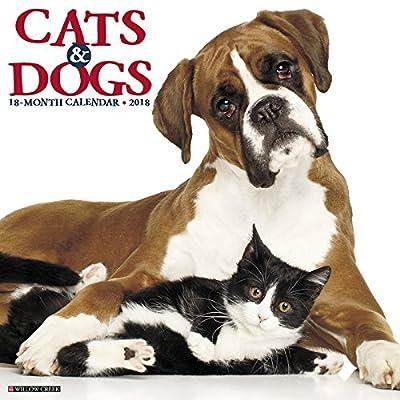 2018 Cats & Dogs Wall Calendar