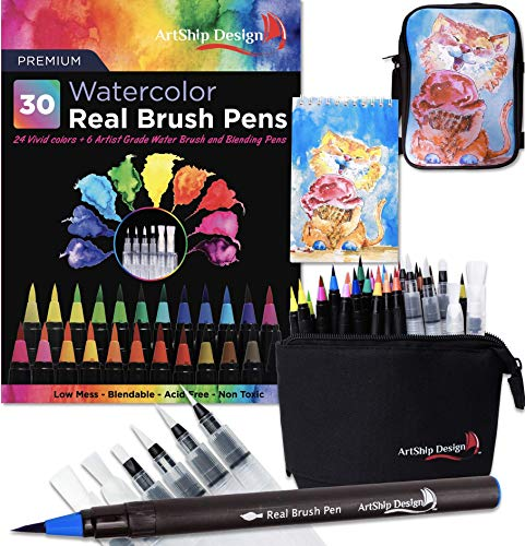 (Gift Pack 30 Watercolor Brush Pens, Matching Messenger Bag and Watercolor Pad, Custom Folding Upright Pen Case, 24 Colors 6 Water Brushes, Real Nylon Brush Tips, Watercolor Painting, Low Mess, Cat)