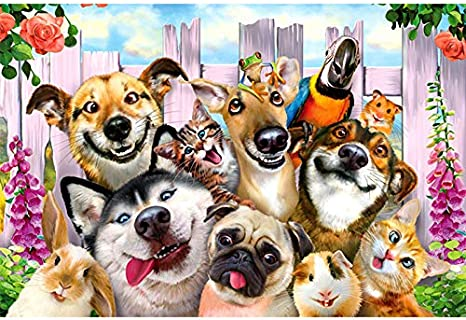 BBL-Football 1000 Piece Puzzles for Adults Jigsaw Puzzles Dogs in The Living Room with Kentucky Derby Decor Puzzles Educational Toys Jigsaw Puzzles 1000 Pieces for Kids Age 14
