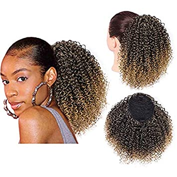 Stupendous Amazon Com Entranced Styles Afro Puff Drawstring Ponytail Schematic Wiring Diagrams Amerangerunnerswayorg