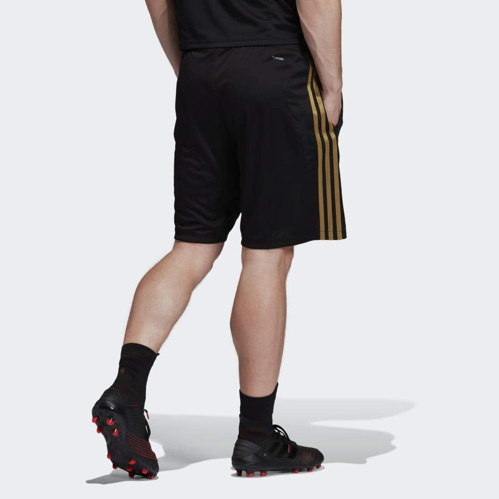 check out 157fb afbcc Amazon.com : adidas 2019-2020 Real Madrid Training Shorts ...