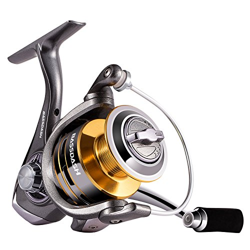 Bassdash Raider Spinning Fishing Reel, 9+1 Corrosion Resistant Bearings Including Indestructible TC4 Anti-Reverse, Carbon Fiber Drag, in Sizes 2000 3000 4000 for Saltwater or Freshwater