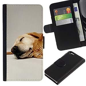 KLONGSHOP // Tirón de la caja Cartera de cuero con ranuras para tarjetas - Labrador Retriever perro de mascota de oro - Apple Iphone 6 //