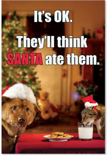 12 Boxed 'Think Santa Ate Them' Christmas Cards with Envelopes 4.63 x 6.75 inch, Happy Holidays with Kitty and Puppy Eating Cookies Christmas Cards, Milk and Christmas Cookies Holiday Notes B1957 Christmas Cookie Gift Card