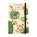 Cavallini AG2018/SUC Succulents Weekly Planner 2018