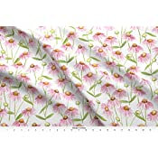 Amazon com: Spoonflower Echinacea Fabric - Echinacea Daisy