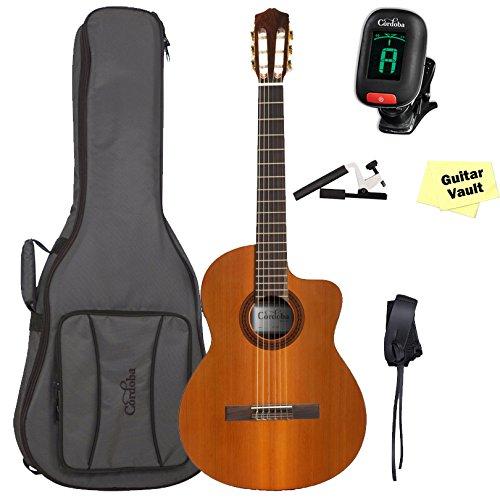 Deluxe Guitar Gig Bag - 8