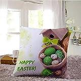 Kimloog Happy Easter Colored Eggs Throw Pillow Cover Cushion Case Sofa Waist Cushion Covers Car Home Decor 18X18 Inch (D)