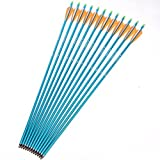"12pcs 30"" Archery Aluminum Arrows with Changeable Arrowhead Blue Shaft Arrows for 30-80lbs Compound Bow/Long Bow Spine 300"