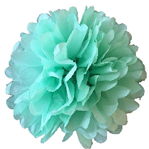 (Pack of 10 Tissue Paper Flower Ball Pom pom Party Decoration Indoor Outdoor 6