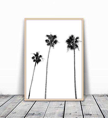 Palm Tree Print, Palm Print, Palm Tree Photography, Black and White, Palm, Palm Tree, Tropical Wall Art, Tropical Decor, Wall Decor, Black and White Palm Tree, Thanksgiving Gift, Christmas Gift, 8x10