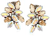 Ben-Amun Jewelry Swarovski Crystal Amore Cluster Clip-On Earrings for Bridal Wedding Anniversary