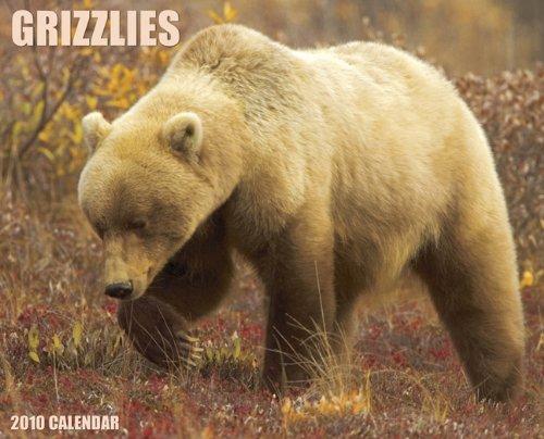 Grizzlies 2010 Calendar (2010 Calendar Bears)