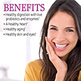 Garden of Life Antioxidant - Vitamin Code Raw Whole