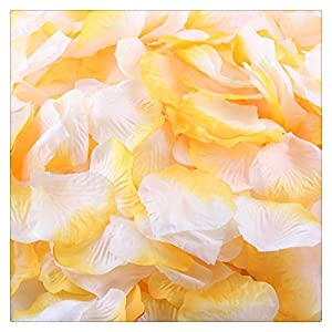 FTXJ Artificial Flowers, 1000pcs Silk Rose Artificial Petals Wedding Party Flower Favors Decorations 48