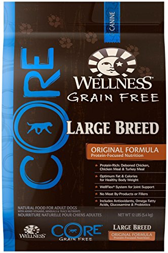 Wellness Core Grain - Wellness CORE Natural Grain Free Dry Dog Food - Large Breed Health Recipe - 12lb
