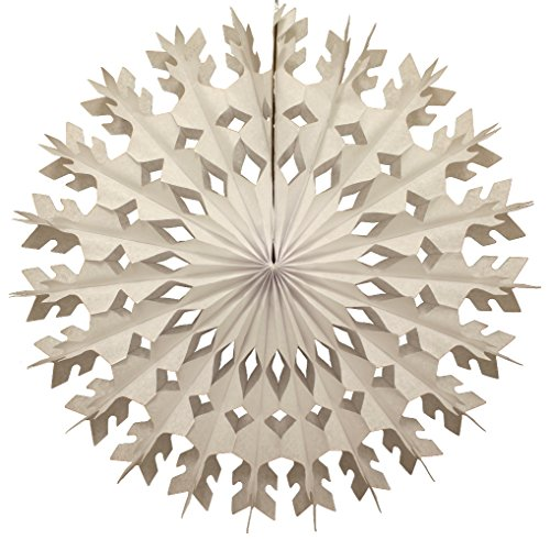 6-pack 22 Inch Large Tissue Paper Snowflake (White) by Devra Party
