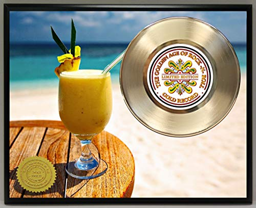 G.A.R.R. Rupert Holmes Escape (The Piña Colada Song) Gold Record Poster Art Limited Edition Commemorative Music Memorabilia Display Plaque (Rupert Holmes Escape The Best Of)