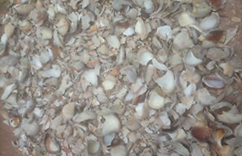 1-kilo-crushed-sea-shells-snail-cat-slug-repellent-for-pots-borders-guaranteed