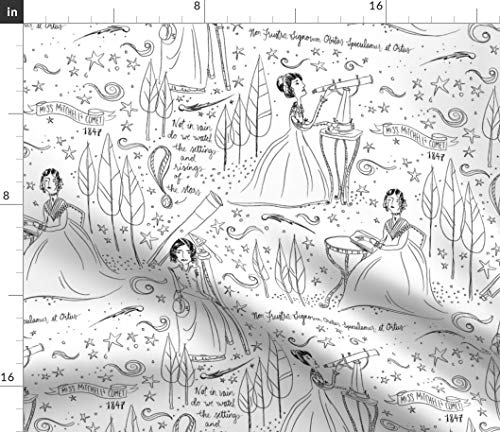 Spoonflower Womens Day Toile Fabric - Miss Mitchell'S Comet De Jouy Black White Drawing International Print on Fabric by The Yard - Velvet for Upholstery Home Decor Bottomweight Apparel