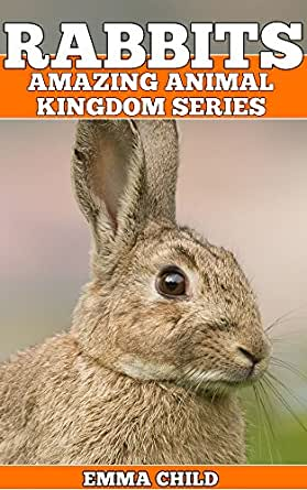 RABBITS Fun Facts And Amazing Photos Of Animals In Nature Amazing Animal Kingdom Book 17