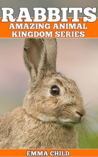 RABBITS Fun Facts And Amazing Photos Of Animals In Nature Animal Kingdom Book