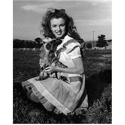 Marilyn Monroe 8 inch x 10 inch PHOTOGRAPH Some Like It Hot The Seven Year Itch Gentlemen Prefer Blondes B&W Sitting in Grass Holding Cute Baby Lamb kn ()