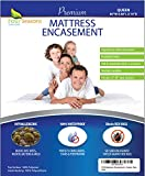 Queen Mattress Protector Bedbug Waterproof Zippered Encasement Hypoallergenic Premium Quality Cover Protects Against Dust Mites Allergens