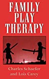 Family Play Therapy (Child Therapy Series)