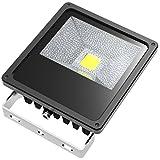 ABI 50W Low Voltage DC LED Flood Light Waterproof Landscape Security Lamp 5000lm 12V/24V with 10ft Cord (4300K Natural Cool White)