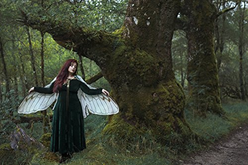 Cicada fairy wings, natural white costume cape costume, festival clothing]()