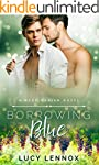 Borrowing Blue: A Made Marian Novel