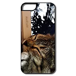 Cute Sleeping Cat Hard Case For IPhone 5/5s